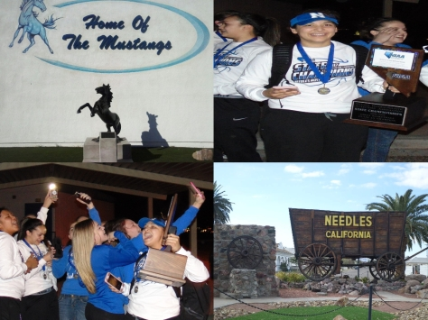 needles-lady-stangs-championship-final-winners-2-25-2017